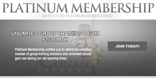 Platinum-Membership-Prices