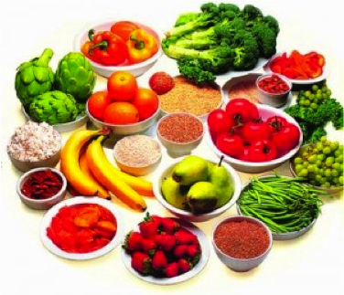 freshfoods and nutrition