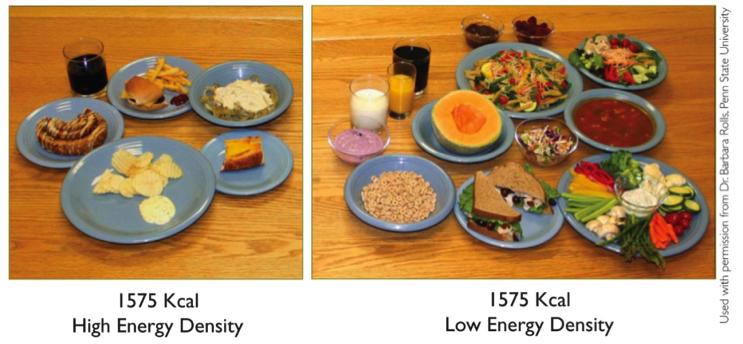 high-low-density-meals