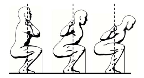 biomechanics of the squat